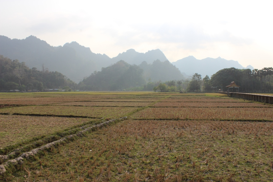 Local scenery of the limestone mountain ranges.